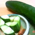 -小金井野菜-キュウリ