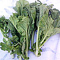 小金井野菜-菜の花