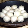 小金井野菜-ギンナン