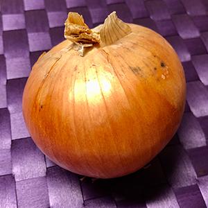 小金井野菜-タマネギ